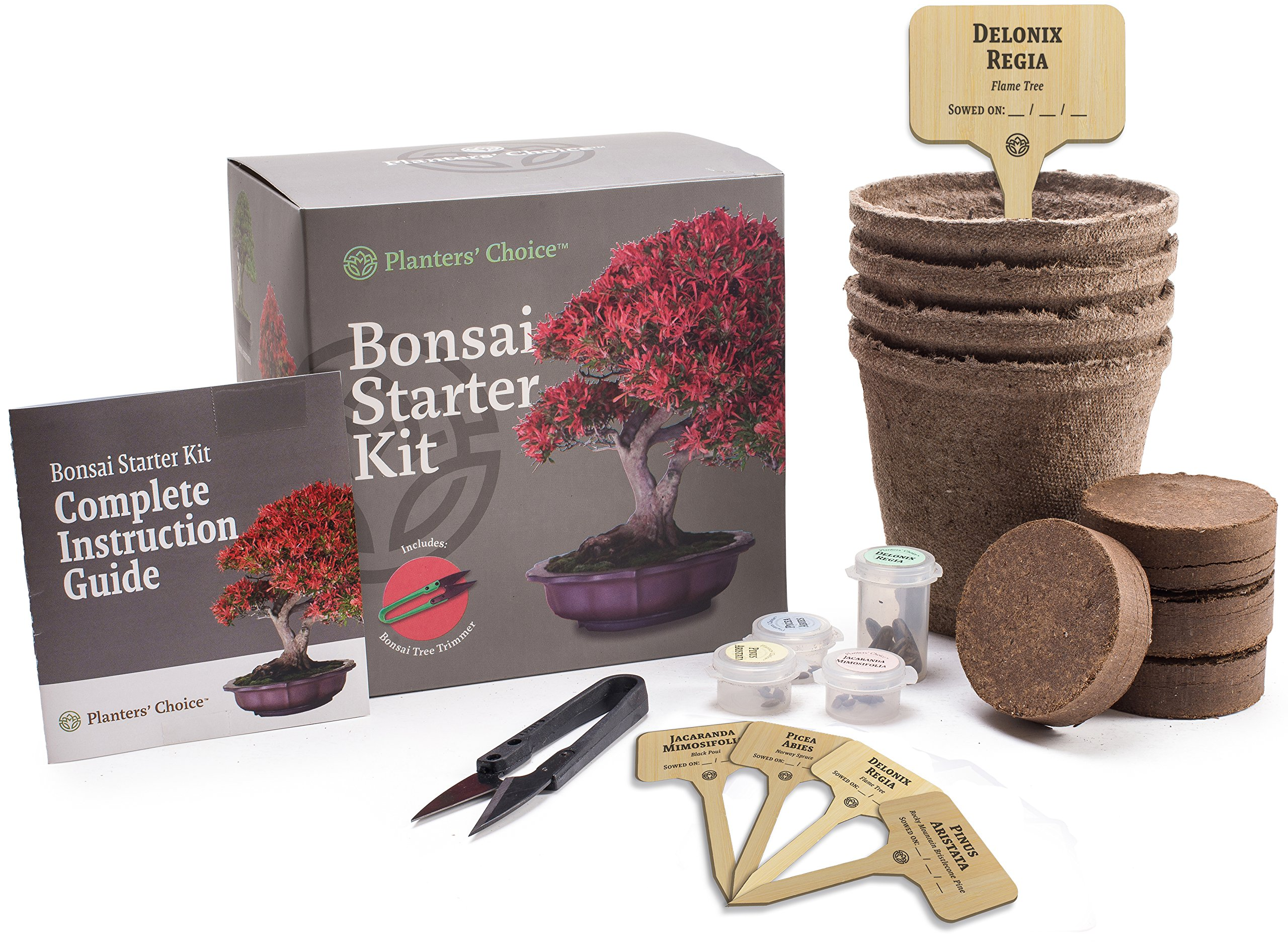 Plant Kits are great gift ideas for her