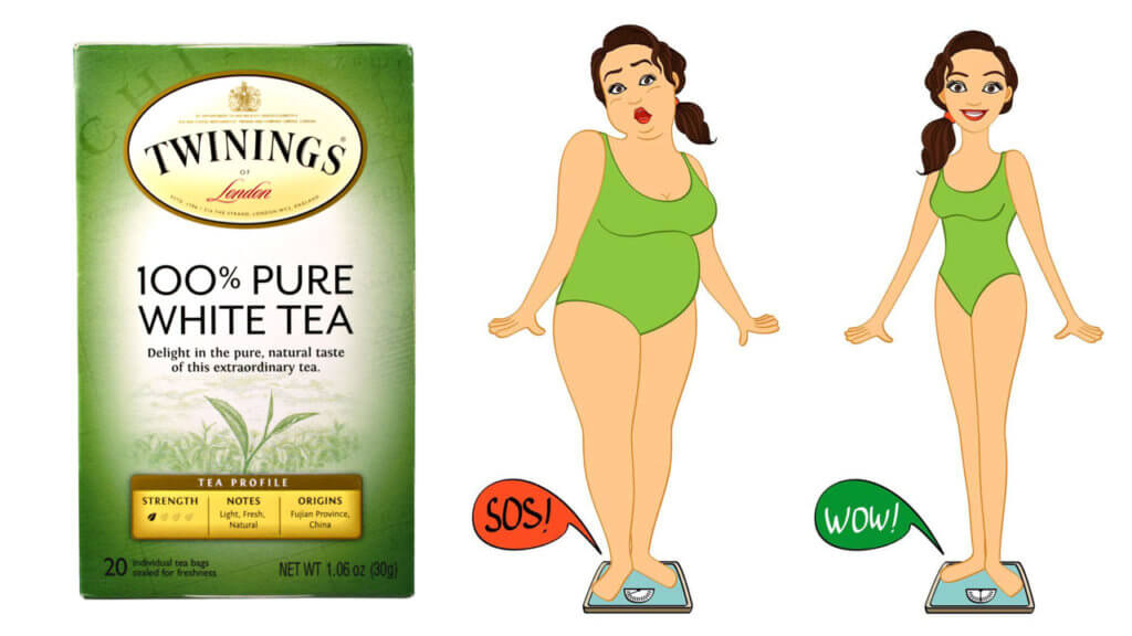 White tea lose weight