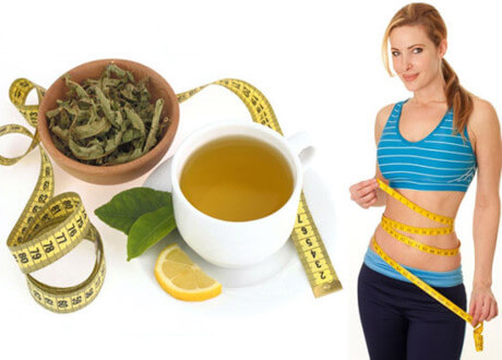 oolong tea lose weight 1