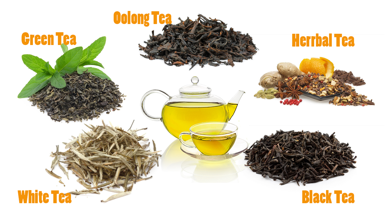 The experience of tea in full color and flavor for tea lovers