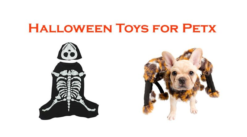 halloween toys for pet